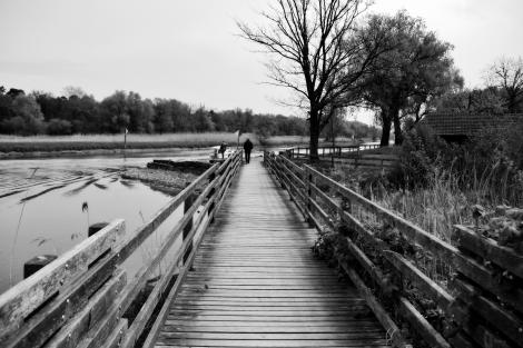 Brücke (2)