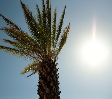 Algarve Vilamoura